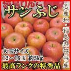 りんご サンふじ 大玉12〜15玉5kg 福島笹谷産 特秀品 送料無料 ご予約 贈答用 訳あり品ではございません