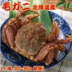毛ガニ(毛蟹) 北海道産 ボイル冷凍Mサイズ1尾