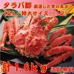 【送料無料】特大タラバガニ脚 たっぷり1.6kg(シュリンク処理済・ボイル冷凍・0.8kg前後2入りセット)
