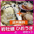 【送料無料】『うまか岩牡蠣とひおうぎ貝の春夏貝類2セット【小】』