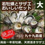 お歳暮 御歳暮 ギフト 【送料無料】高島の一年若牡蠣・サザエのおいしいセット(大) 安心の調理レシピ付