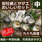 お歳暮 御歳暮 ギフト 高島の一年若牡蠣・サザエのおいしいセット(中) 安心の調理レシピ付
