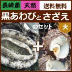 天然黒アワビと活サザエベストセット(大)よか魚イチ押し!お得!送料無料 黒あわびと活さざえ