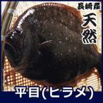 【送料無料】天然ヒラメ 3.3kg前後1尾 「1〜2月のみの完全限定商品」