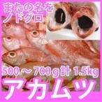 天然高級鮮魚 アカムツ(のどぐろ)  計1.5kg(500〜700g前後) 脂の滴るとろける旨さの高級魚をご自宅で