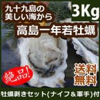 Shellfish - 【予約受付中!】高島一年若牡蠣(殻付き)計3kg(30個前後) もちろん生食OK!送料無料 九十九島 かき 牡蠣 ギフト 殻付かき  お歳暮