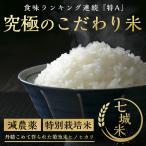 令和2年熊本県産 こだわり七城米(ヒノヒカリ)5kg×2袋