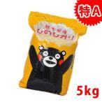 新米【送料無料】令和2年 熊本県城北産ヒノヒカリ 精白米5kg おいしいお米  米 5kg 送料無料