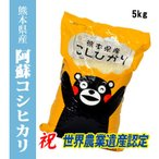 平成28年 熊本県阿蘇産 コシヒカリ 精白米5kg