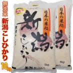 無洗米 お米 米 新潟県産コシヒカリ 10kg (5kg×2) 令和2年産 送料無料 (新潟産直米) 白米 こしひかり 沖縄は送料かかります 新潟産