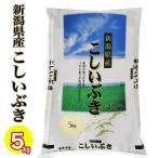お米 米 新潟県産こしいぶき 5kg 令和2年産 送料無料 (新潟産直米) 白米  精米  沖縄は送料かかります
