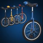 一輪車 自転車 アウトドア 大人 子供 高さ調整可  16インチ 全4色 dlc16