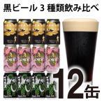 クラフトビール beer 詰め合わせ 飲み比べセット 発泡酒 お酒 3種12本 お試し 黒ビール 軽井沢 限定 クラフトザウルス