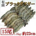 約22cm・超特大有頭ブラックタイガー1.3kg(15尾) 海老 えび エビ 業務用