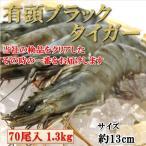 約13cm・有頭ブラックタイガー1.3kg(70尾) 海老 えび エビ 業務用