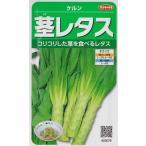 【茎レタス】ケルン【サカタのタネ】(1.2ml)野菜種[春まき][秋まき]923579