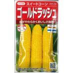 【スイートコーン】ゴールドラッシュ【サカタのタネ】(25ml)野菜種/とうもろこしの種[春まき]921206