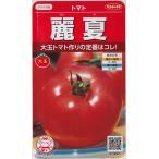 【トマト】麗夏(れいか)【サカタのタネ】(21粒)野菜種[春まき]920005