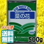 【菜の花】カネコ種苗【500g】★メール便送料無料(代引き不可)★