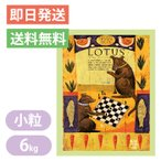 ロータス シニア チキンレシピ 小粒 6kg LOTUS ドッグフード