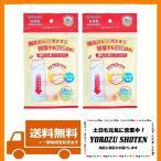 カネソン(Kaneson) 哺乳びん用インナーバッグ(20枚入2個セット) 日本製 食品衛生法適合品 時短で衛生的 外出、夜間授乳、災害備蓄に 透明