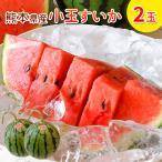 熊本県産 小玉スイカ 2玉 スイカ王国 スイカ生産 日本一 西瓜 フルーツ
