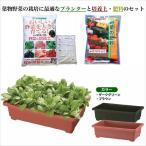 しゅうかく菜560型葉物野菜お買い得野菜の培養土・肥料セット
