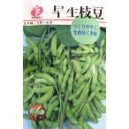 フクカエン 早生枝豆の種(タネ)