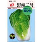福花園 野崎結球白菜2号