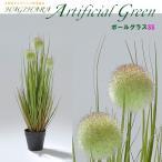 ハギハラ 人工観葉植物 ボールグラス 月見草  SS 53cm   2096