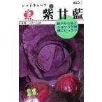 フクカエン 紫甘藍 レッドキャベツの種(タネ)