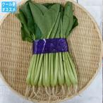小松菜(束)