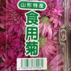 食用菊 紫