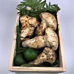 松茸 北米産 贈答用 木箱(300g)