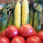 <送料無料>皇室献上農家が作るトマト2kg&とうもろこし6本詰め合わせ