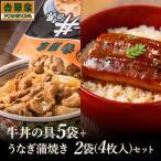 【お中元のし付き】吉野家 冷凍牛丼の具 5袋+うなぎ蒲焼き 2袋4枚(1袋/72g×2パック)