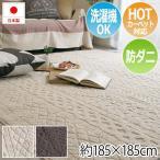 日本製ラグ ウォッシャブル 洗える 防ダニ ホットカーペット・床暖房対応 ニット風 リブ編み カーペット ラグマット デザインラグ 約185×185cm カレン (SUL)