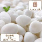 【全国送料無料】最高級白玉砂利 白仙 8分 (約2.3〜2.9cm) 1kg
