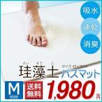 【送料無料】珪藻土バスマット 速乾足拭きマット 約45×35cm ミニサイズ Mサイズ (bath-keisoudo-m-01)