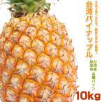 「台湾パイン 10kg パイナップル 台湾産 金鑽パイン【即納分】」の画像