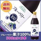ブルーベリージュース 500ml×5本 送料無料 無添加・ストレート果汁100%