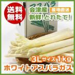 ショッピングから 会津から採り立て直送!! ホワイト アスパラガス 3Lサイズ 1kg 送料無料 アスパラ
