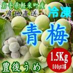 2020年産 7月20日より順次発送 岩手県軽米町産 冷凍 青梅(豊後梅)1.5Kg(500g×3袋) 梅酒 ジュース ジャムにオススメです。