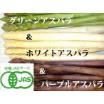 蘆筍 - 【北海道物産】【卸売市場】【北海道産】(有機栽培)グリーン(LM500g)&ホワイト(LM500g)&パープルアスパラ(M〜2L500g)