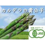 蘆筍 - 【北海道物産】【卸売市場】【北海道産】(有機栽培)グリーンアスパラ(2Lサイズ1kg)25本前後