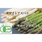 蘆筍 - 【北海道物産】【卸売市場】【北海道産】(有機栽培)ホワイト&グリーンアスパラ(各2Lサイズ500g×2)各12本前後×2