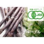 蘆筍 - 【北海道物産】【卸売市場】【北海道産】(有機栽培)グリーン(L1kg)&パープルアスパラ(M〜2L1kg)