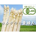 蘆筍 - 【北海道物産】【卸売市場】【北海道産】(有機栽培)ホワイトアスパラ(2Lサイズ1kg)25本前後