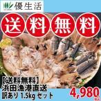 のどぐろ 干物 詰め合わせ 訳あり 浜田漁港直送1.5kgセット (のどぐろ いか あじ) 送料無料