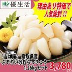 鳥取県産不揃い砂丘らっきょう1.26kg 吉祥庵